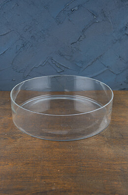Clear Glass Terrarium Dish 3in x 12in