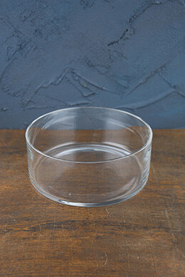 "Clear Glass Terrarium Dish 3"" x 8"""