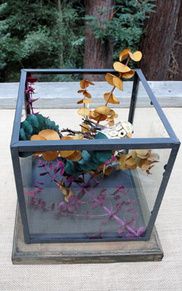 Glass Terrarium Square 9in
