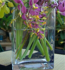 Glass Rectangle Vase 6in