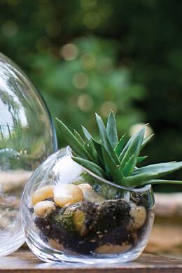 Studio Glass Vase 5 x 4.5