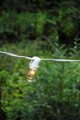 Globe Light String White 54ft (Bulbs Included)