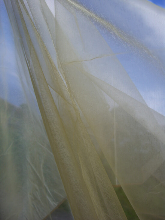 Organza Fabric Golden 9ft