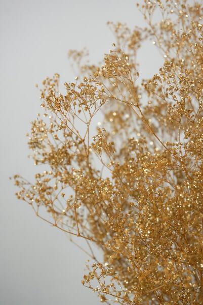 Gold Baby's Breath Branches 4oz. Bunch 26in