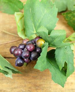 Garland Grape Leaf Green 6ft