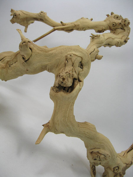 Sanded Grapewood Branch 10in