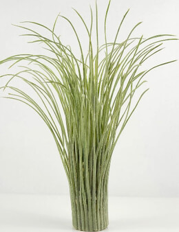 Grass Bundle Artificial 16in