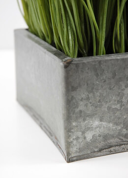 Grass Display in Metal 6.5 in. Square Container