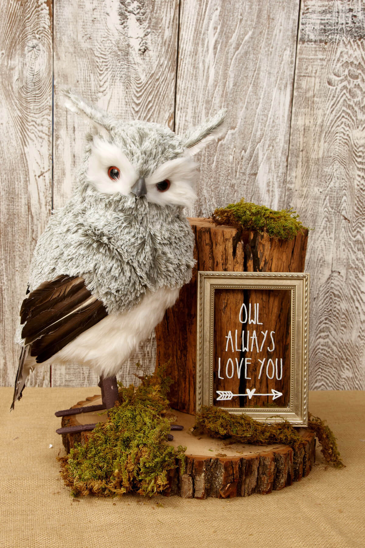 Gray Owl 15.5in