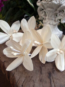 Paper Lily Flowers 5in | Pack of 5