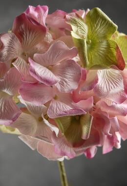 Handmade Pink Parchment Hydrangeas