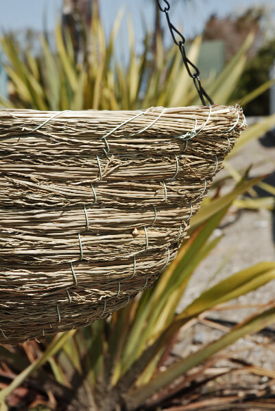 Hanging Baskets Sea Grass
