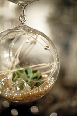 Hanging Glass Balls & Hanging Glass Terrariums
