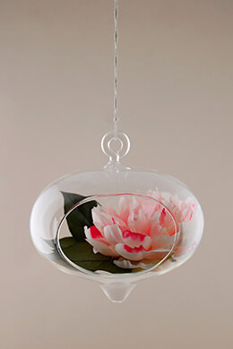 Hanging Glass Terrarium 5.5in