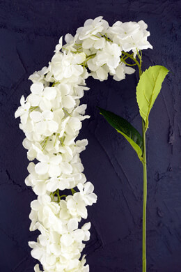 "White Hydrangeas Hanging 30"" of Flowers, Wedding Flowers"