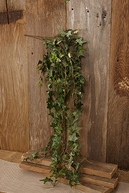 Hanging Ivy Bush Green 31in
