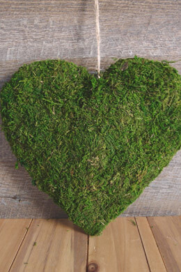 Preserved Moss Covered 5in Heart