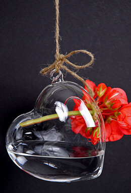 6 Hanging Heart Glass Vases (Set of 6)