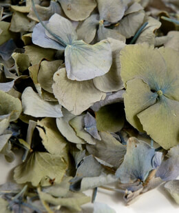 Hydrangea Petals Freeze Dried 5 cups (5 cups/pkg)