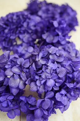 Preserved Purple Hydrangeas Sprays, 3 Flowers