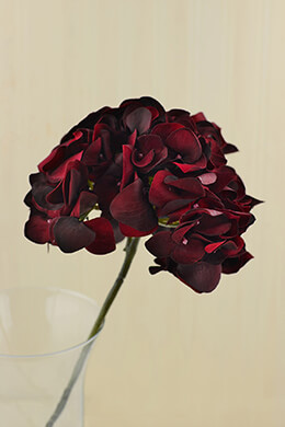 Hydrangea Spray Velvet Burgundy 19in