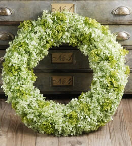 Hydrangea Wreath Preserved Green 19""