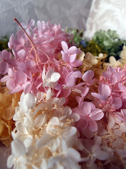 Hydrangeas Flowers, Dried, Preserved, Silk