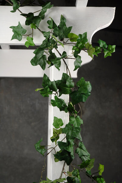 Ivy & Boxwood, Garlands, Stems, Vines, Plants