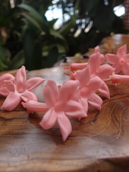"Jasmine Flowers Preserved Soft Pink 2.25"" (12 flowers pkg) pkg"
