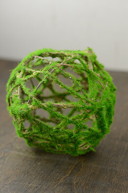 Kiwi Moss Twig Ball 6in