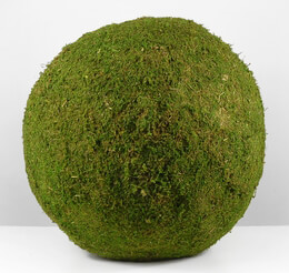 Large Preserved Moss Balls 16in