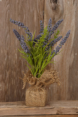 Lavender Bush in Burlap Bag 11in