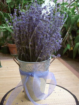lavender flowers, blooms, wreaths, Beautiful flower