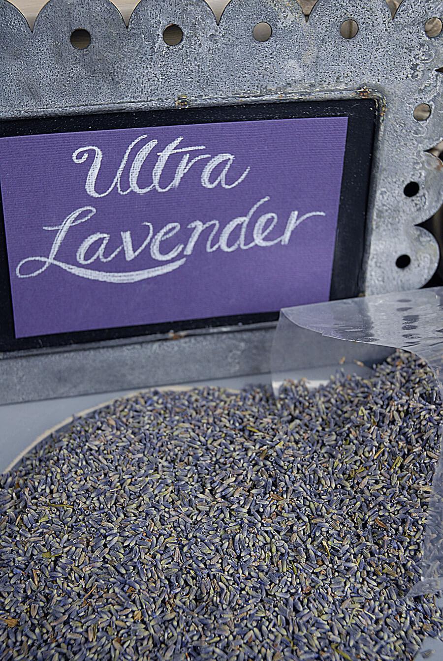 Ultra Grade Lavender 1lb Highest Quality Color and Fragrance