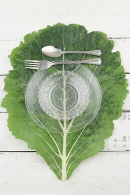 Textured Cabbage Leaf Placemats