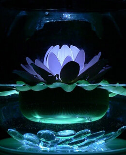 LED LilyLytes - Floating Lotus Lily Lights