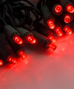 LED String Lights Green Wire Red 16.5ft