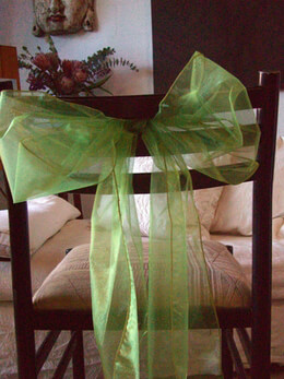 Organza Chair Sashes Light Green (Pack of 10)