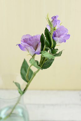 Lisianthus Flower Lilac 25in