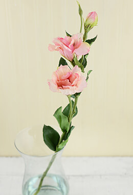 Lisianthus Flower Pink 25in