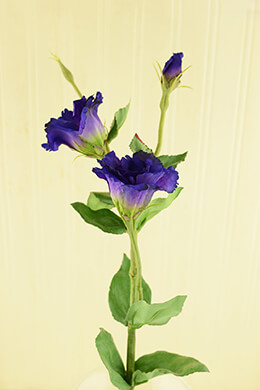 Lisianthus Flower Purple 25in