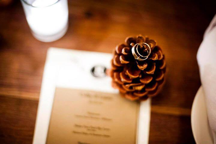Ponderosa Pine Cones 12 Cones