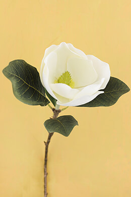 White Silk Magnolia Flower Stem 31""