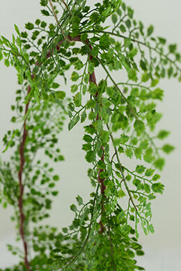 Maidenhair Fern Garland 6ft