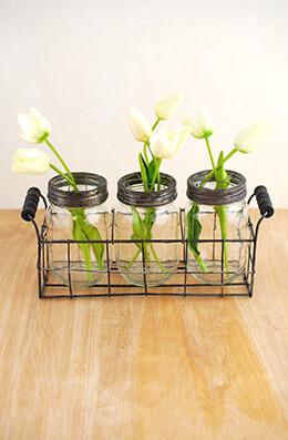 Mason Jar Vase with Frog Lid (Set of 3 Jars)