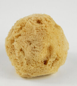 Mediterranean Silk Sponges