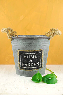 Metal Bucket Garden 7.25in