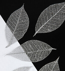 "Metallic Silver 1.5"" Skeleton Leaves 20 leaves"