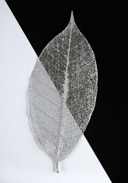 "Metallic Silver 3"" Skeleton Leaves (10 leaves / pkg)"