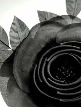 Millinery Flowers Starched & Rolled Black Organza Camilla